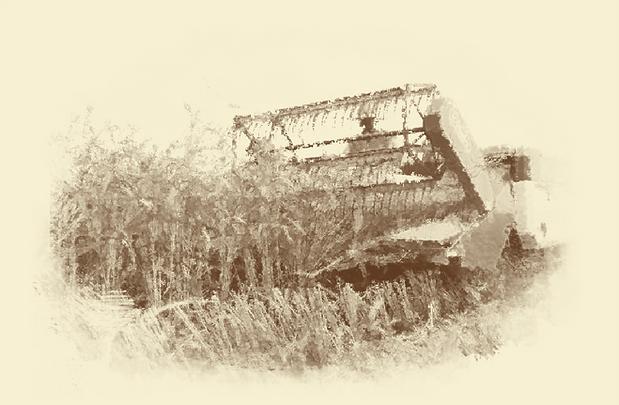 稲刈り水彩.png
