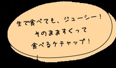 コメント_トマトケチャップ.png