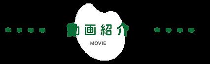 動画紹介.png