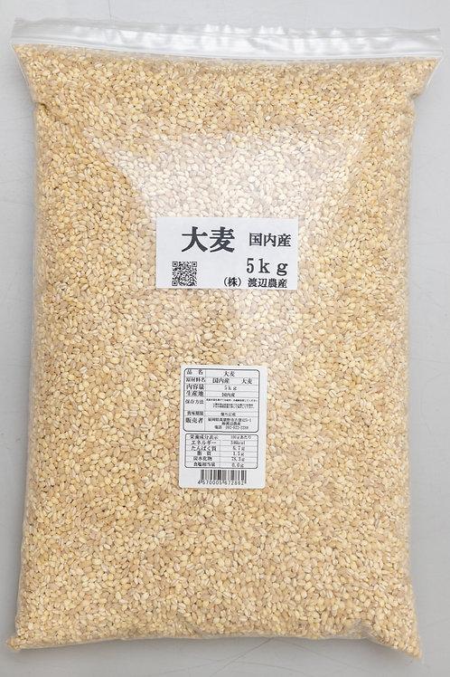 【国内産】大麦 5kg