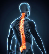 thoracic-spine-myelopathy.jpg
