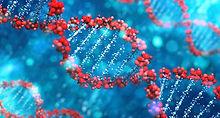 DNA Activation