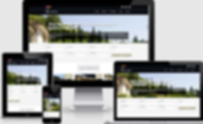 Real Estate Home 2.jpg