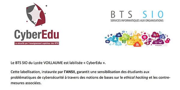 cyber edu.JPG