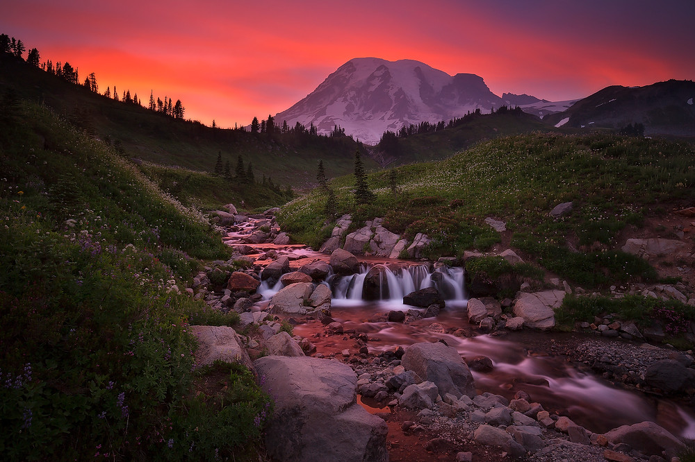The sky above Edith Creek explodes with pink color during sunset in Mt. Rainier National Park. Photographed by Chase Dekker.