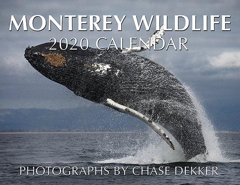 2020 Monterey Wildlife Calendar