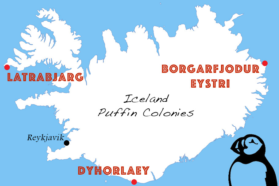 A graphic detailing the best puffin viewing spots across Iceland made by Chase Dekker.