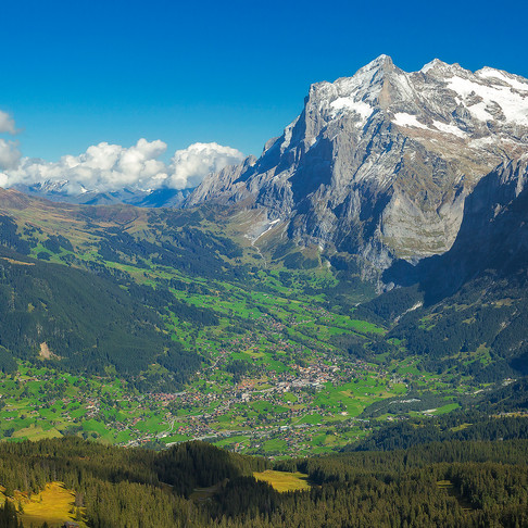 Tales from the Field: A Journey Through the Alps of Switzerland