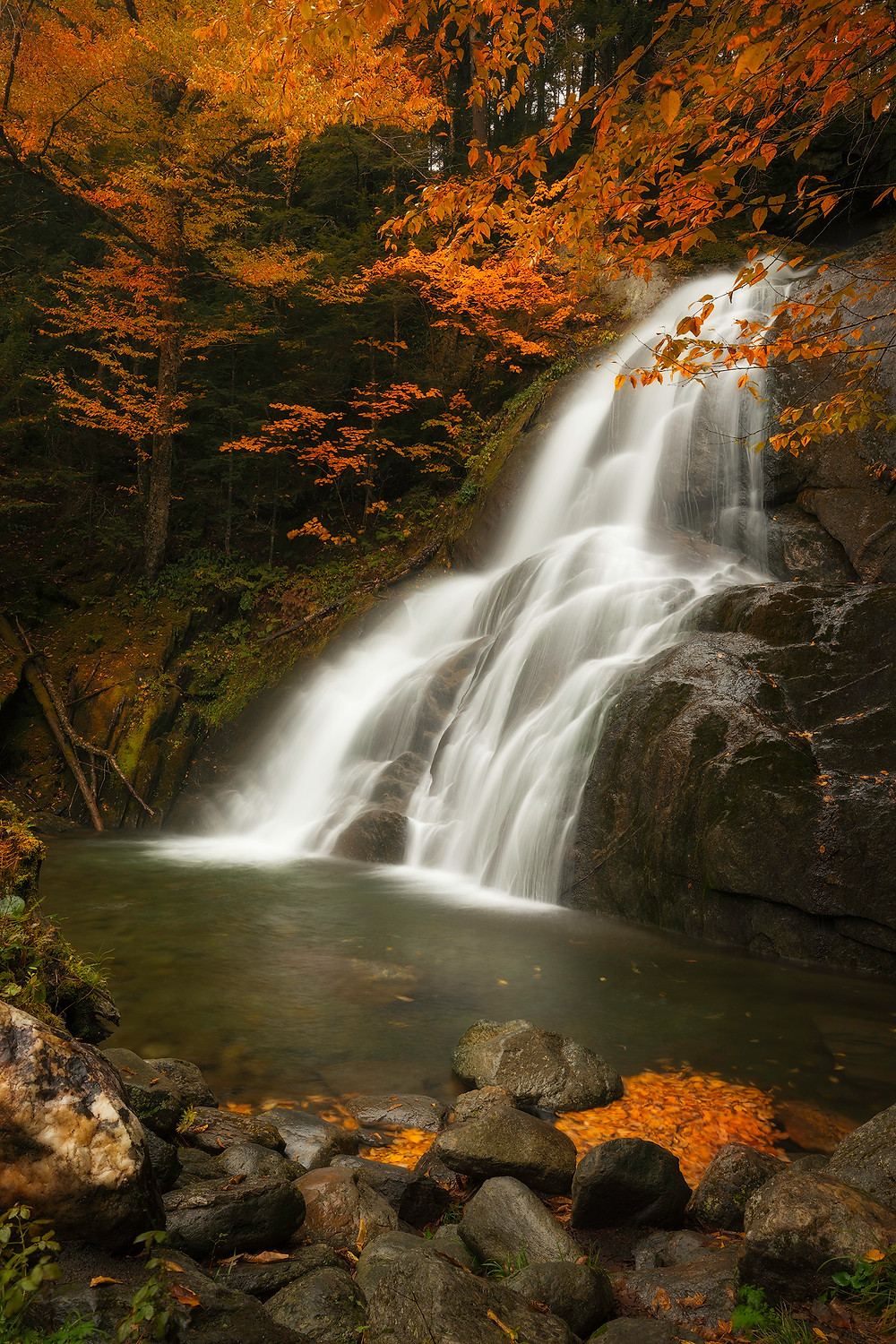 In the Photo of the Week, Moss Glen Falls run swiftly down as fall colors surround it.