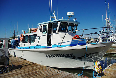 The Sanctuary Cruises boat sits in the harbor before heading out for Chase Dekker's great white shark photo tour.
