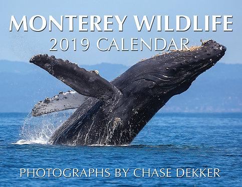 2019 Monterey Wildlife Calendar