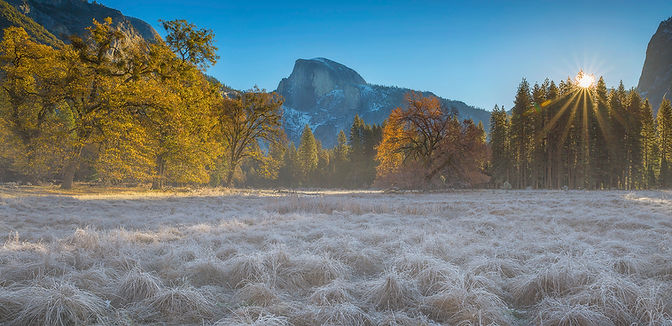 Half Dome is photographed from the Ahwahnee Meadow on Chase Dekker's Yosemite workshop.