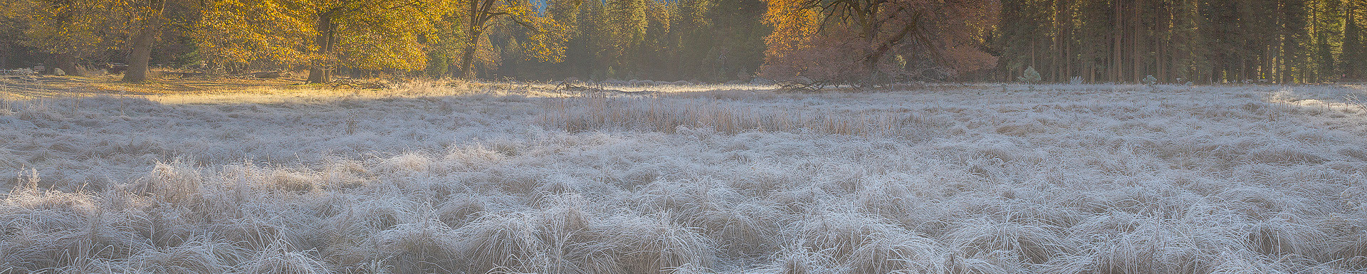 Ahwahnee Autumn
