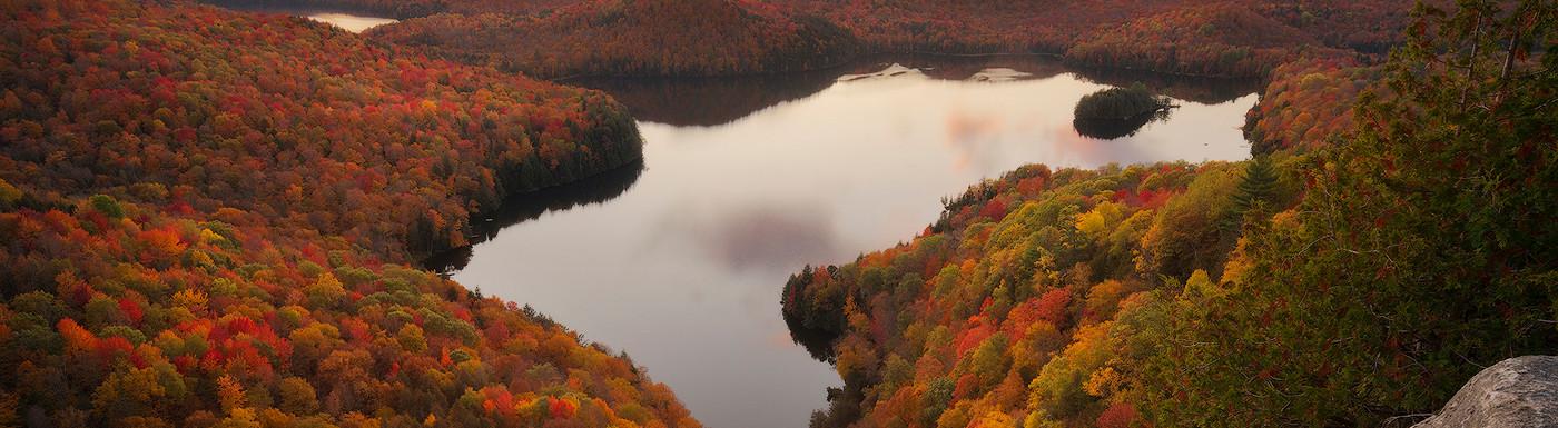 Overlooking Autumn