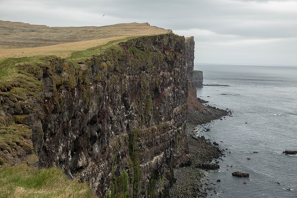 A hiker stands on the edge of an enormous cliff in Latrabjarg on Chase Dekker's Iceland photography workshop.