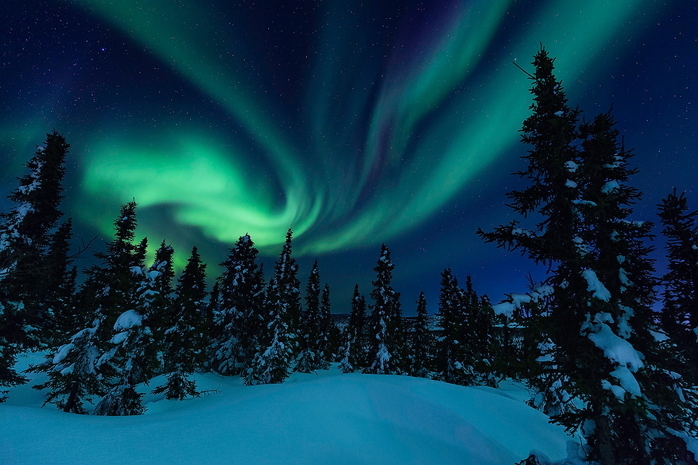 The Aurora Borealis dances high in the night sky. Photographed by Chase Dekker.