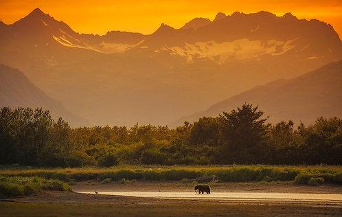 Essence of Alaska - 24x36 Poster