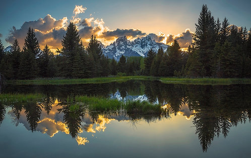 Blissful Reflection - Matted Print