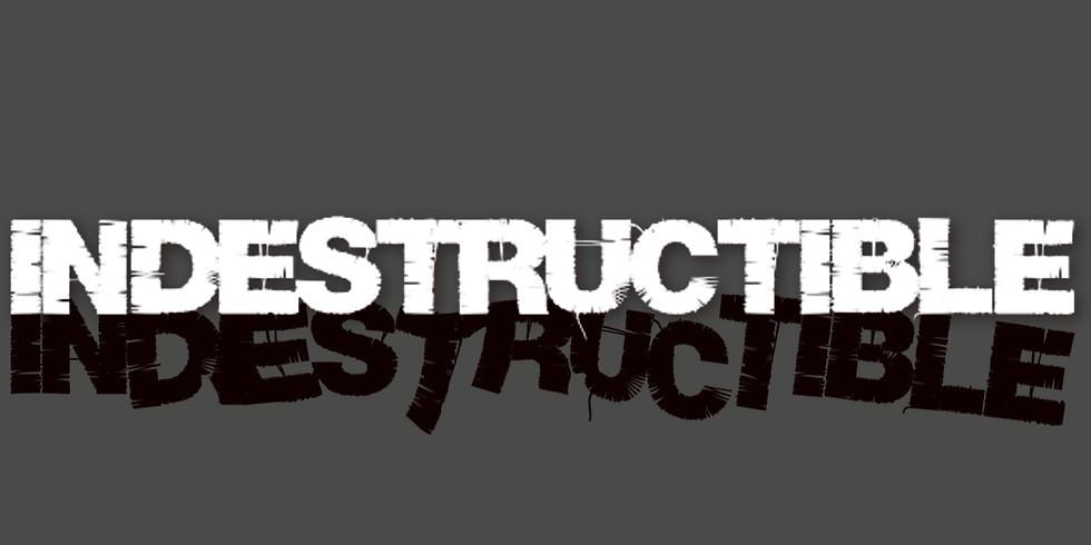 Indestructible Series