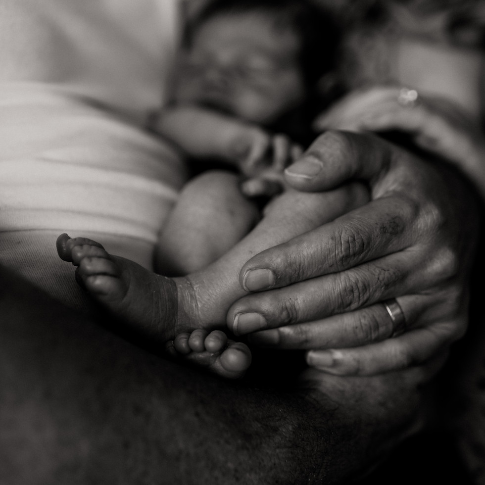 MammarellaFamily- Johke Photography Bris