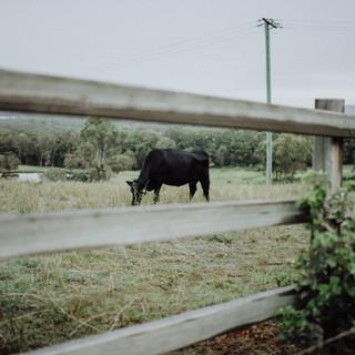 Jo-matermity-alix-duyn-photography-31.jp