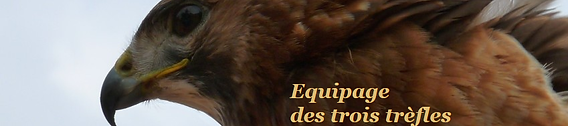 equipage.png