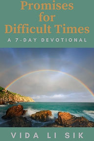 PROMISES FOR DIFFICULT TIMES reader magn