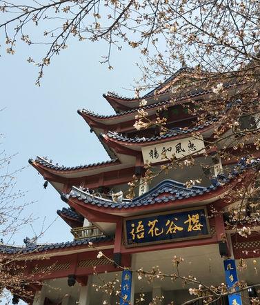 无锡鼋头渚-Yuantouzhu of Wuxi City (JD)