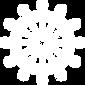 wheelicon(white).png
