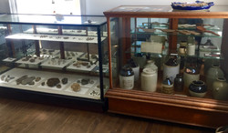 Fossils & Pottery