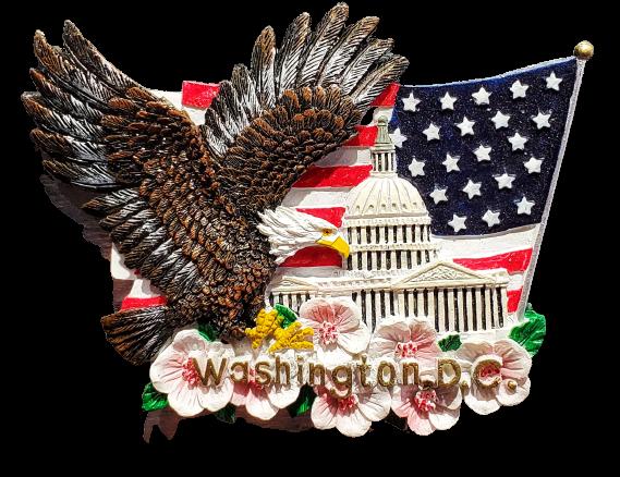 Magnet - Washington DC Eagle Capitol