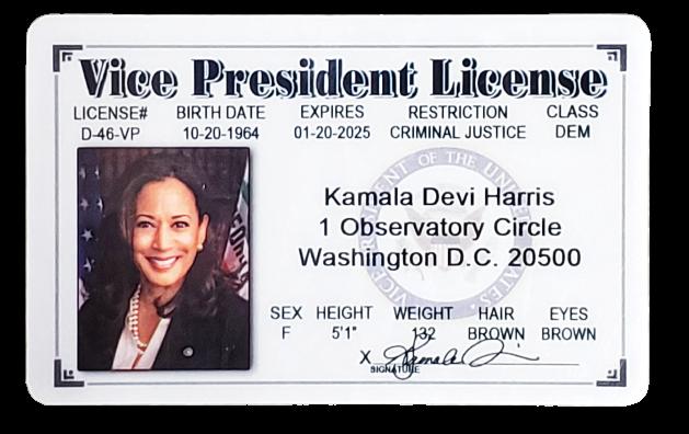 Toy - Kamala Harris President License