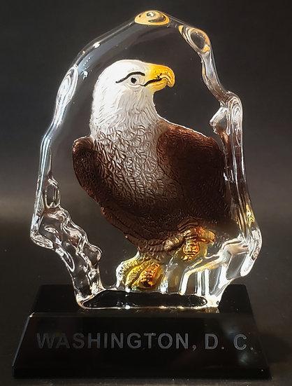 Crystal - Washington DC Eagle