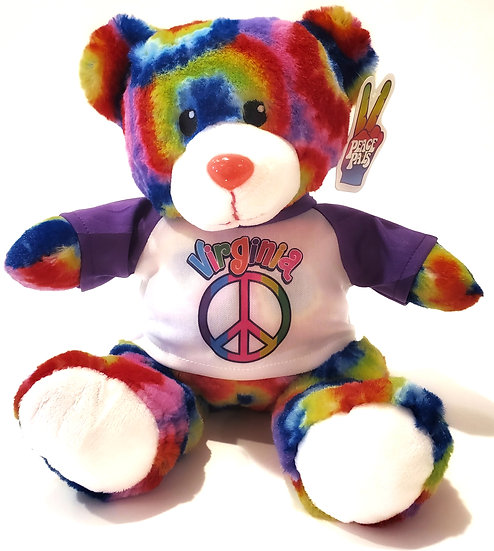 Bear - Tie-Dye Teddy Bear