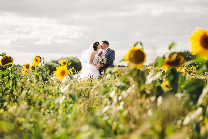 Sunflowers, Surf & Sparklers at The Thatch Barn, Yelling
