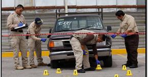 Método mexicano para elaborar perfiles     criminales
