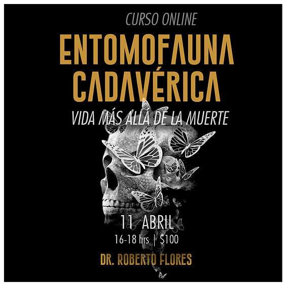 Entomofauna cadavérica. Vida más allá de la muerte