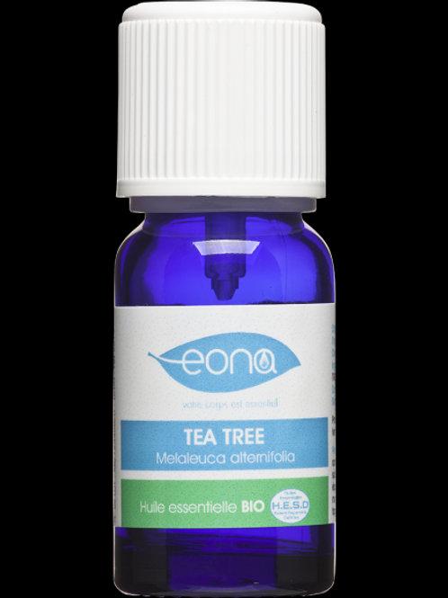 Huile essentielle de Tea-tree (Arbre à thé) Bio