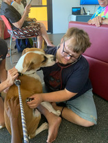 Tane enjoying the company of a dog from the Karratha vet