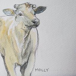 Molly Moo Cow