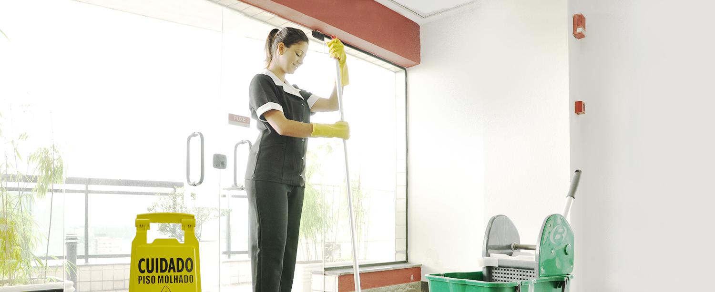 Limpeza profissional