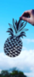 Poppy Pineapple_edited.jpg