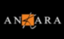 logo ankara.png