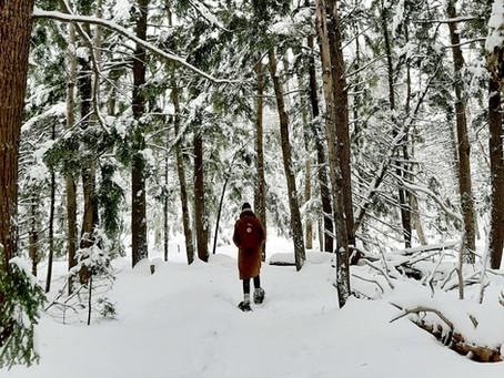 Canadees winterwonderland in Nova Scotia