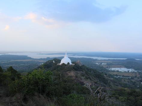 Van de westkust naar de oostkust van Sri Lanka