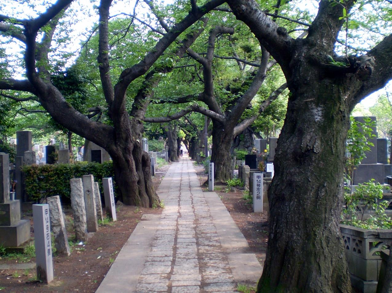 Tokyo Tokio Yanaka
