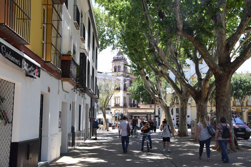Sevilla Alameda de Hércules
