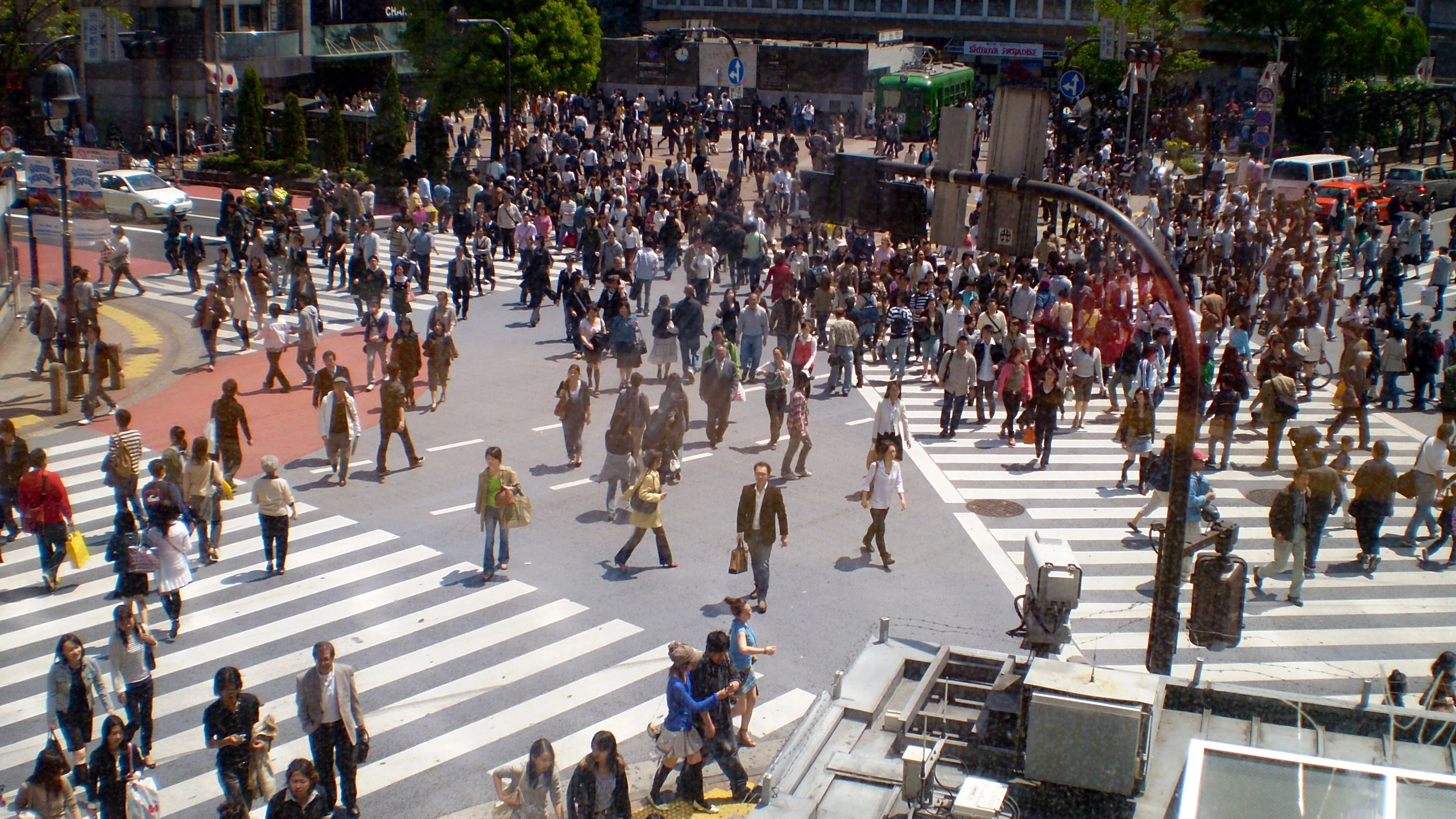 Tokyo Harajuku Shibuya Crossin