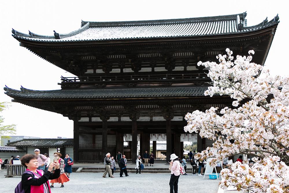京都ツアー 同行撮影