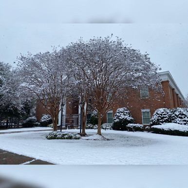 Library In Snow